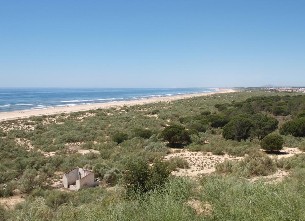 Meeresblick in Portugal
